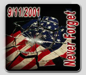 Never Forget-Shattered Flag Image